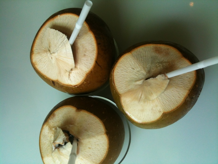 Trio of coconuts - my favorite way to beat the heat!