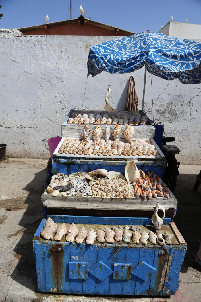 Shells for sale in Essaouira.