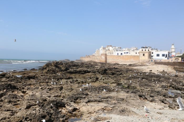 Walled city of Essaouira.